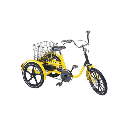 Tricycle manuel adolescent